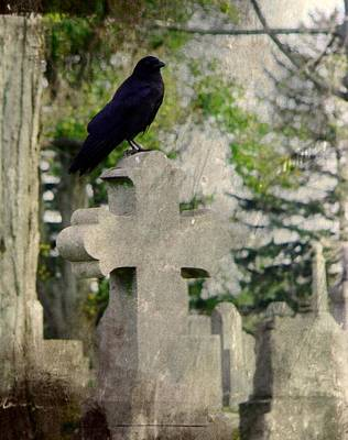 Ravens In Graveyard Photograph - Graveyard Occupant by Gothicrow Images