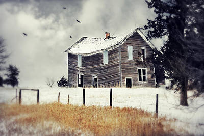 Country Cottage Photograph - Gravity by Julie Hamilton