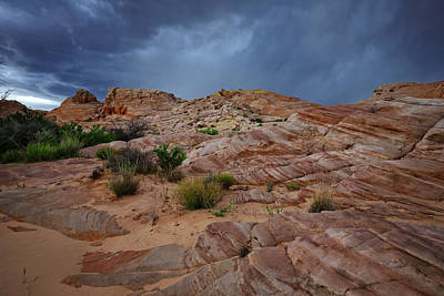 Valley Of Fire Wall Art - Photograph - Gray And Red In The Valley Of Fire by Rick Berk