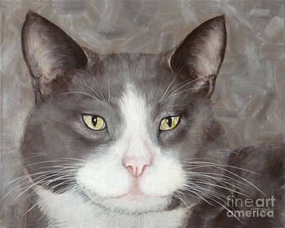 Painting - Gray And White Tuxedo Cat by Amy Reges