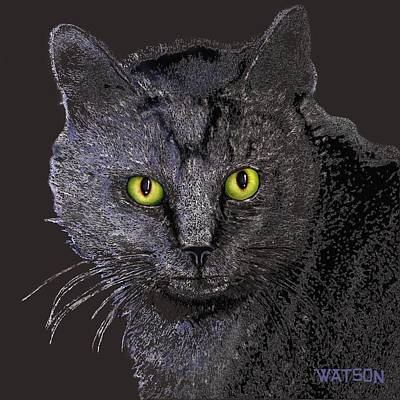 Digital Art - Gray Cat by Marlene Watson