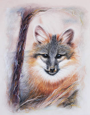 Art Print featuring the drawing Gray Fox by Patricia Lintner
