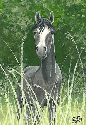 Hide And Seek Painting - Gray Mare -- Let's Play Hide And Seek by Sherry Goeben