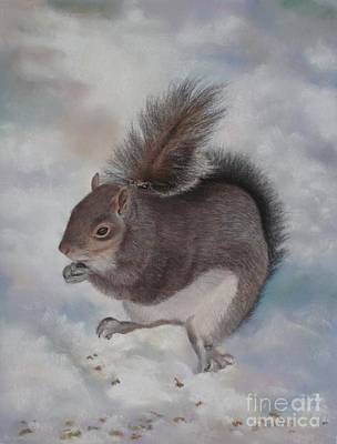 Gray Squirrel Art Print by Jackie Hill