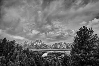 Sky Photograph - Gray Treetons by Jon Glaser