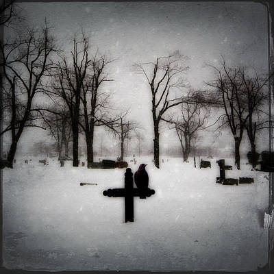 Gray Winter Art Print