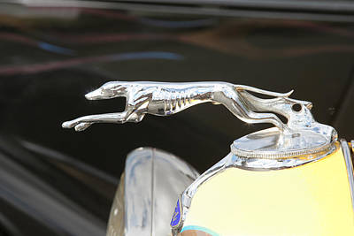 Photograph - Grayhound Hood Ornament by John Orsbun