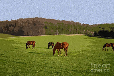 Photograph - Grazing by Joe McCormack Jr