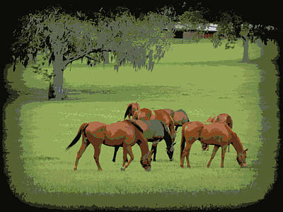 Photograph - Grazing Under The Oaks   by Sheri McLeroy