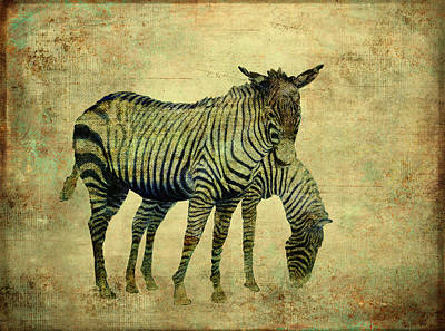 Digital Art - Grazing Zebras by Sandra Selle Rodriguez