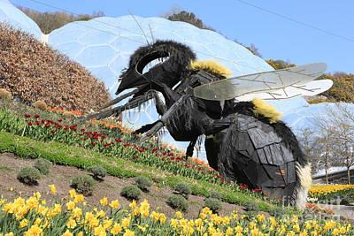 Great  Bee At Eden  Original