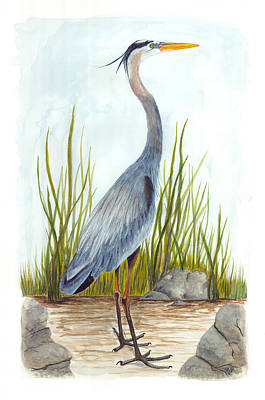 Painting - Great Blue Heron by Cindy Hitchcock