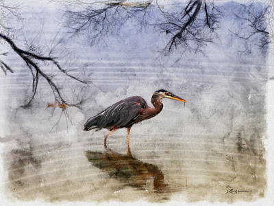 Digital Art - Great Blue Heron Fishing - Featured In Cards For All Occasions Group by EricaMaxine  Price