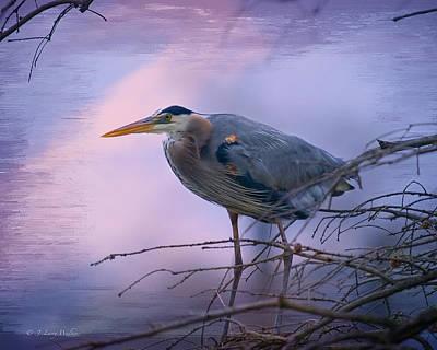 Digital Art - Great Blue Heron Fishing by J Larry Walker