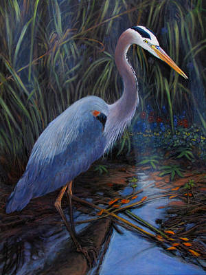 Great Blue Heron In The Backwater Art Print by Charles Wallis