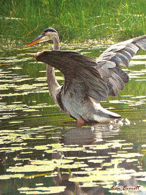 Great Blue Heron Painting - Great Blue Heron by Ken Everett