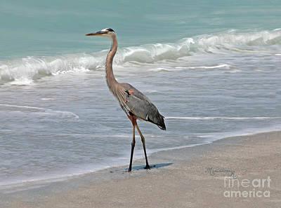 Great Blue Heron On Beach Art Print by Mariarosa Rockefeller