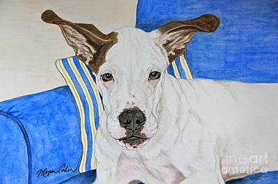 Dog Painting - Zane The Dane by Megan Cohen