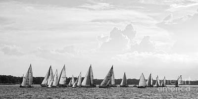Photograph - Great Day For Sailing by Sami Martin