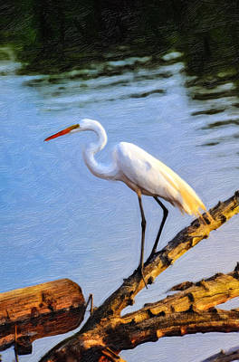 Great Egret Fishing Oil Painting Art Print