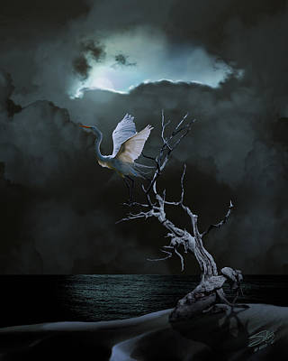 Egret Digital Art - Great Egret Under Full Moon by IM Spadecaller