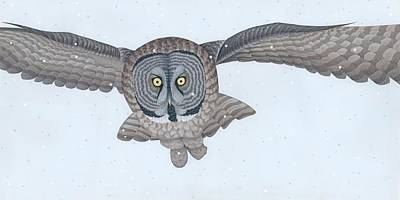 Winter Painting - Great Gray Owl by Nathan Marcy