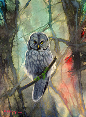 Great Grey Owl In Abstract Original
