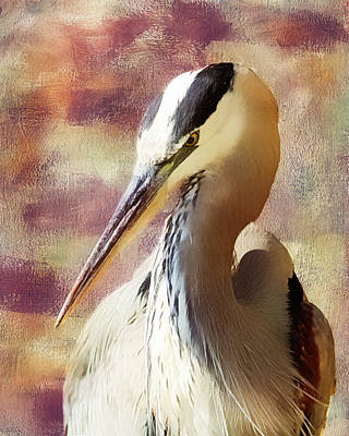 Heron Mixed Media - Great Heron Portrait by Georgiana Romanovna