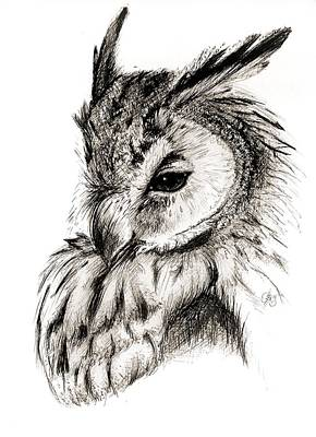 Drawing - Great Horned Owl 1 by Scarlett Royal