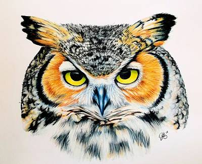 Drawing - Great Horned Owl 2 by Scarlett Royal
