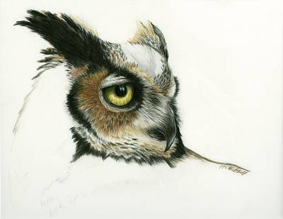 Great Horned Owl Drawing - Great Horned Owl by Heather Mitchell