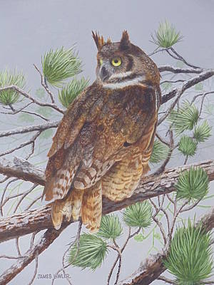 Painting - Great Horned Owl by James Lawler
