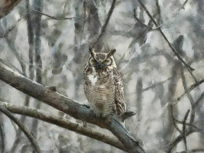 Digital Art - Great Horned Owl Painterly by Ernie Echols