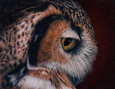 Colored Pencil Painting - Great Horned Owl Portrait by Pat Erickson
