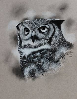 Great Horned Owl Drawing - Great-horned Owl by Samantha Howell