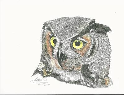 Drawing - Great Horned Owl by Bill Hubbard