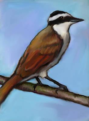 Flycatcher Drawing - Great Kiskadee Bird by Joyce Geleynse