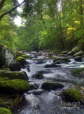 Photograph - Great Smoky Mountain Creek by Janice Spivey