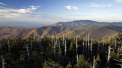 Photograph - Great Smoky Mountains Clingmans Dome Landscape by Pierre Leclerc Photography