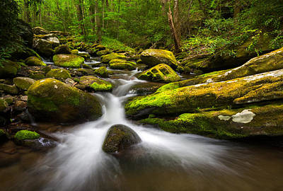 Great Smoky Mountains Gatlinburg Tn Lush Art Print