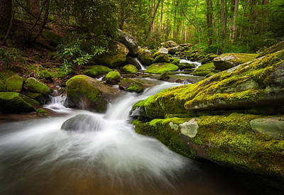 Great Smoky Mountains Photograph - Great Smoky Mountains Gatlinburg Tn Roaring Fork - Gift Of Life by Dave Allen