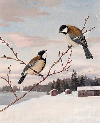 Scandinavian Painting - Great Tits by Celestial Images