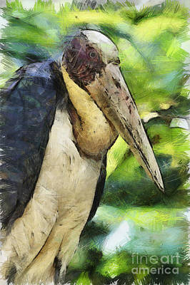 Digital Art - Greater Adjutant Stork by Nola Lee Kelsey