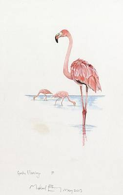 Greater Flamingos Painting - Greater Flamingo by Michael Earney