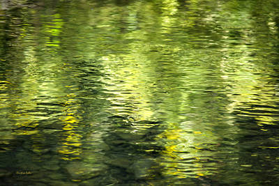 Photograph - Green Abstract Water Reflection by Christina Rollo