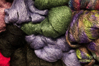Photograph - Green And Fluffy At Jimmy Beans Wool by Vinnie Oakes