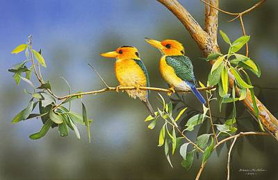 Green And Gold - Yellow-billed Kingfishers Art Print