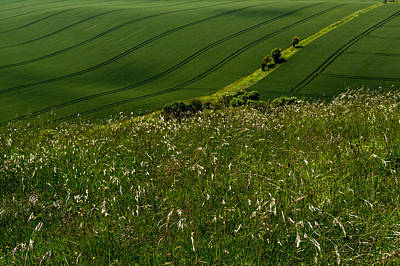 Photograph - Green And Pleasant Land by Gary Eason