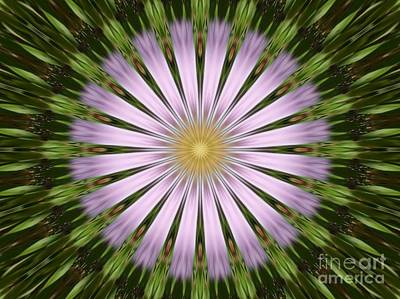 Photograph - Green And Purple Starburst by Spirit Baker
