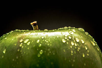Art Print featuring the photograph Green Apple by Wade Brooks
